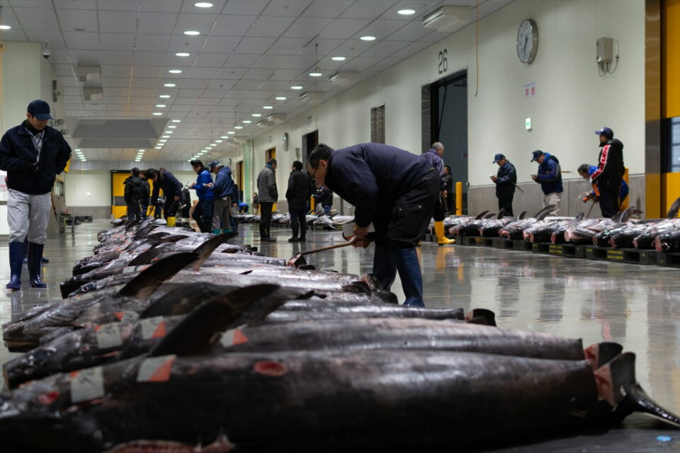 Uo Ichiba(Fish Market)