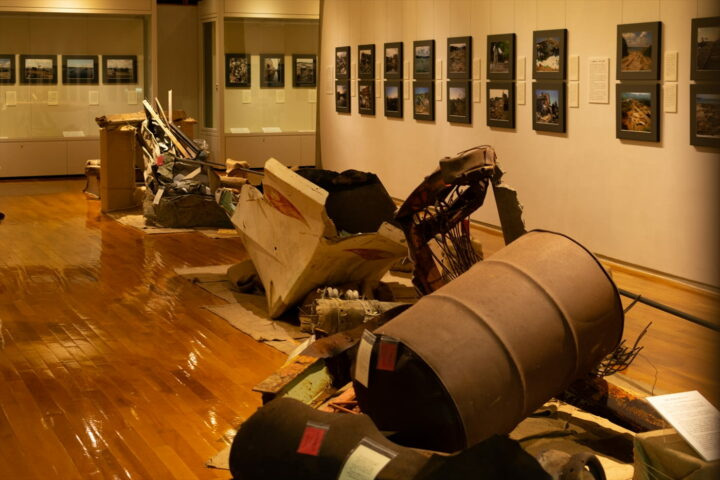 Rias Ark Museum of Art