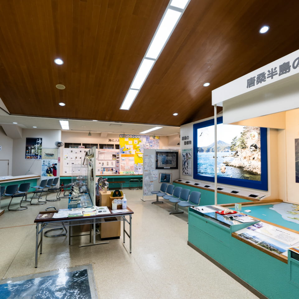 Karakuwa Visitor Center, Tsunami Experience Hall